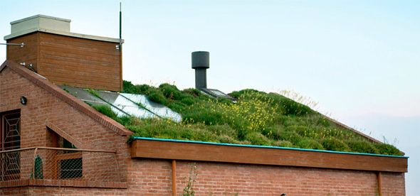 O que é e como fazer um telhado verde - Met@lica