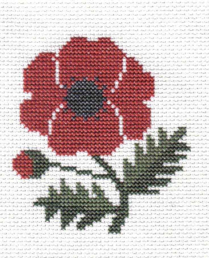 finished completed cross stitch PRAIRIE SCHOOLER garden blooms poppy PREORDER