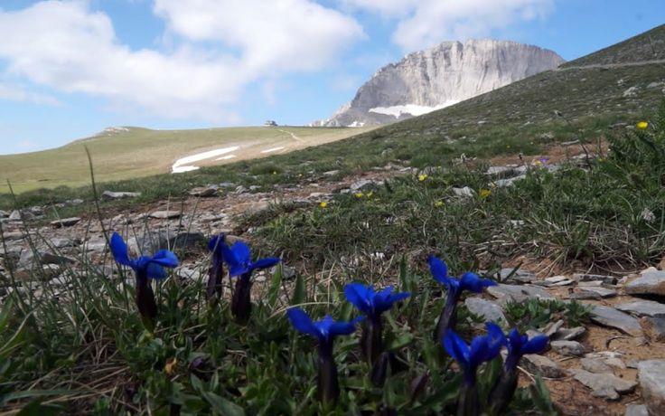 "Litochoro, ""Stefani"" peak from ""Oropedio Mouson"" Mt Olympus Macedonia Greece"