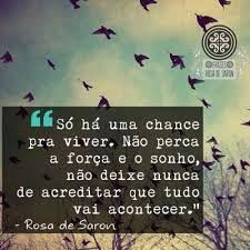 Não perca a força, o sonho, não deixe nunca de acreditar que tudo vai acontecer. Rosa de Saron