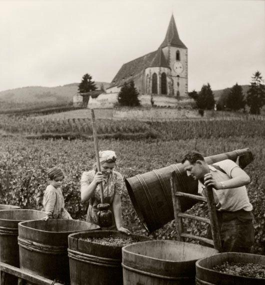 Hunawihr, la vendimia, France, 1945 by Robert Doisneau