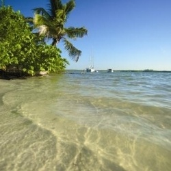 Sanibel Island and Captiva Beach