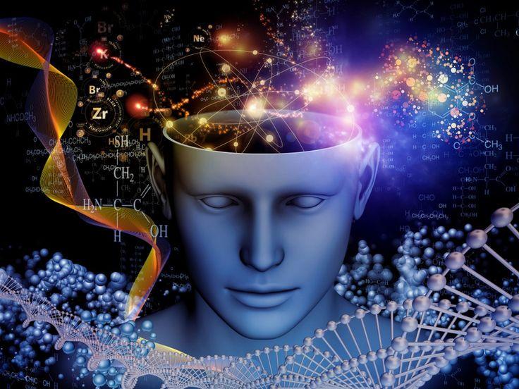 20 безумно интересных научных сериалов обо всём на свете