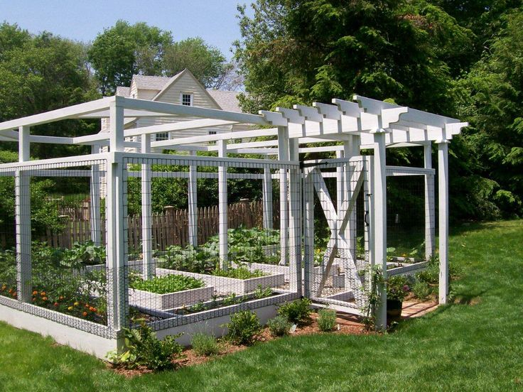 Our attractive home garden systems are low-maintenance and user friendly for everyone except the critters!