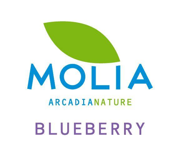 Logo Molia Arcadia Nature, Blueberry