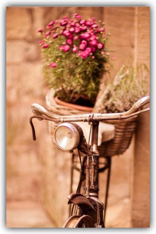 Idea de como aprovechar una bicicleta vieja para decorar - Como decorar el jardin ...