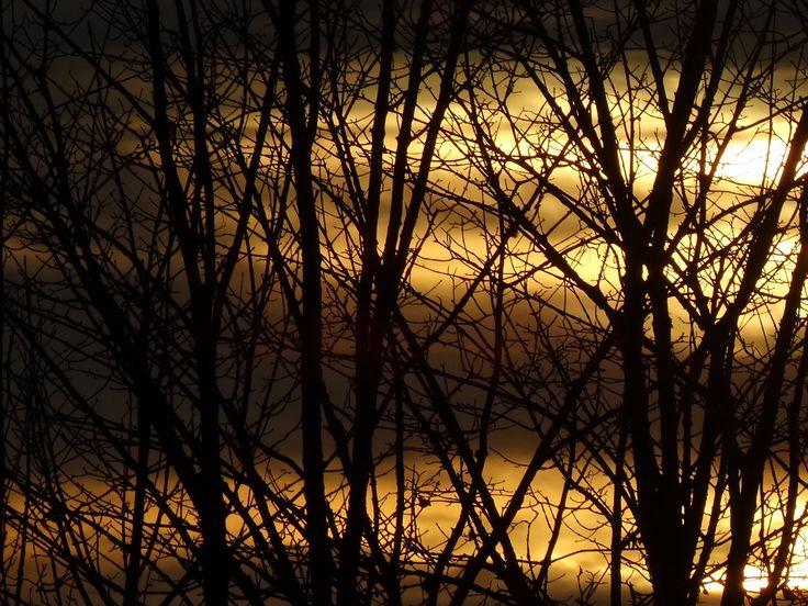 Discussion avec la lumière à travers les rideaux, nov 2013
