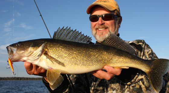 Six things to watch out for when fishing for walleyes for Walleye fishing tips