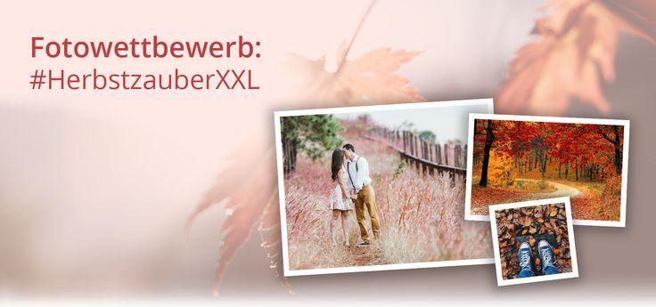 Wir suchen Dein #HerbstzauberXXL Foto. Lade es hoch und Du hast die Chance auf Gutscheine und eine Olympus Systemkamera!