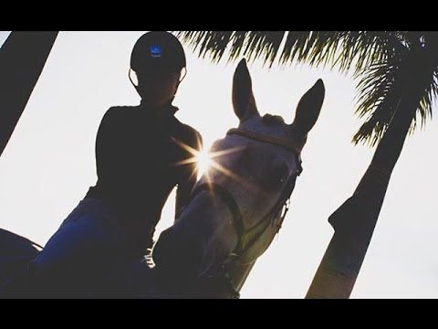 Counting stars REMIX - EQUESTRIAN music video (HD) - YouTube