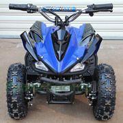 350W atv, 350W Electric ATV, 350w kids atv, mini quad, kids 4 wheeler