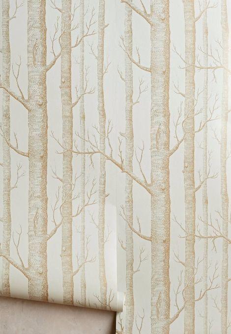 Best Woods Wallpaper Birch Tree Wallpaper Tree Wallpaper Bedroom Birches Wallpaper 400 x 300
