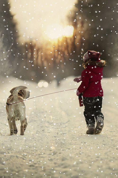 Last Winter Walk ~ by: Elena Shumilova