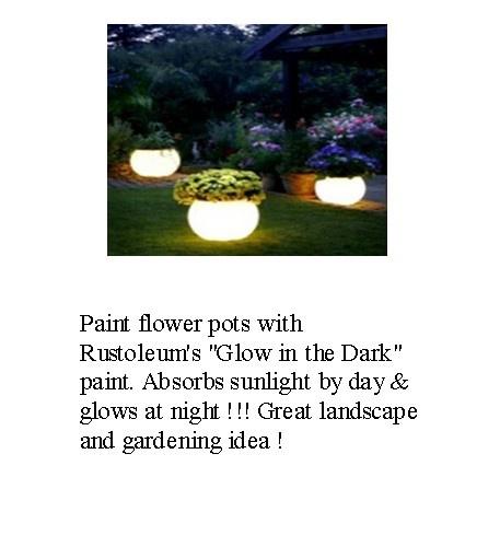 glow in the dark flower pots gardening back yard ideas