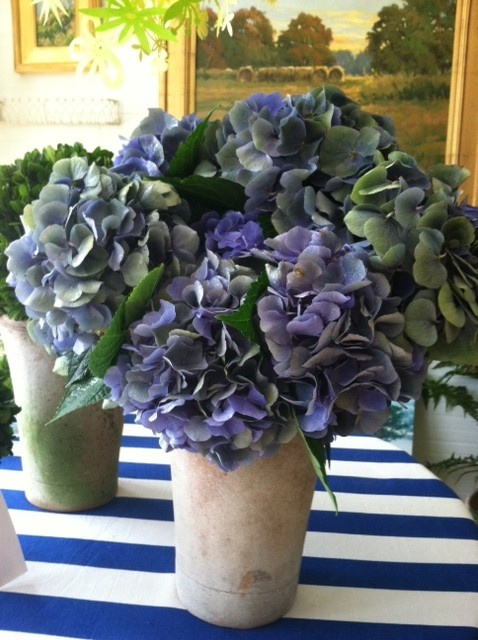 Another shot of antique blue-purple-green hydrangeas.