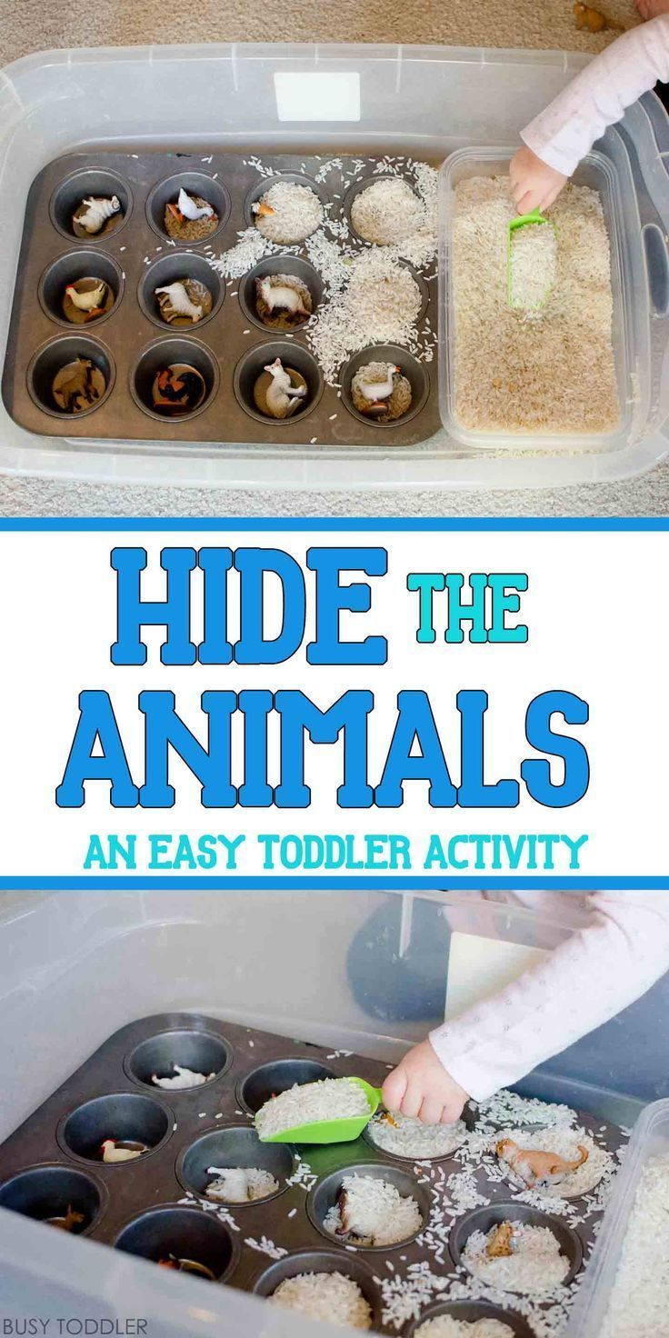 Hide the Animals: Quick Sensory Bin - easy indoor activity for toddlers. quick toddler activity; sensory bin