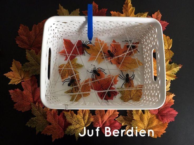 Juf Berdien Spinnenspel spinnetjes vangen fijne motoriek klas kleuters herfst kriebeldiertjes