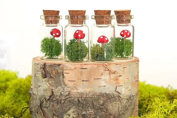 Enchant your wedding guests with mini terrarium favors. What could be sweeter to remind your friends and family of your special wedding day.