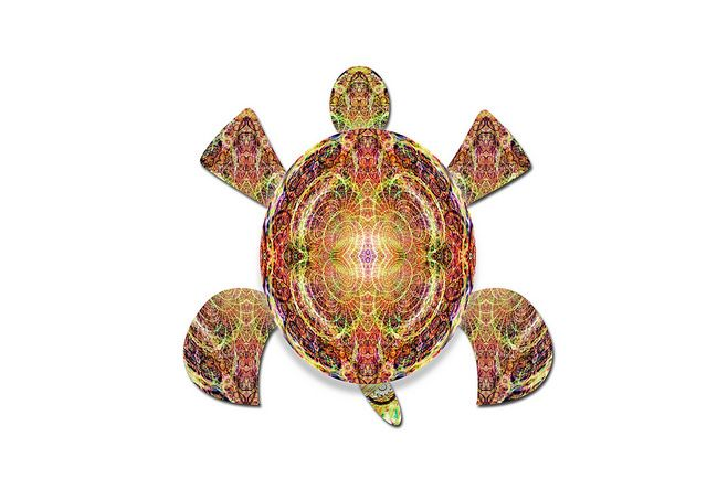 turtle32 | Flickr - Photo Sharing!
