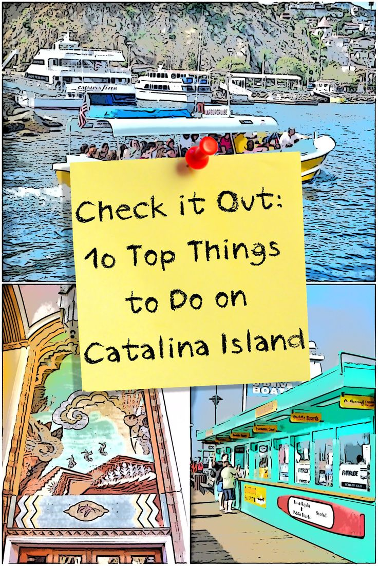 If you're looking for just the best things to do when you go to Catalina Island, here they are.
