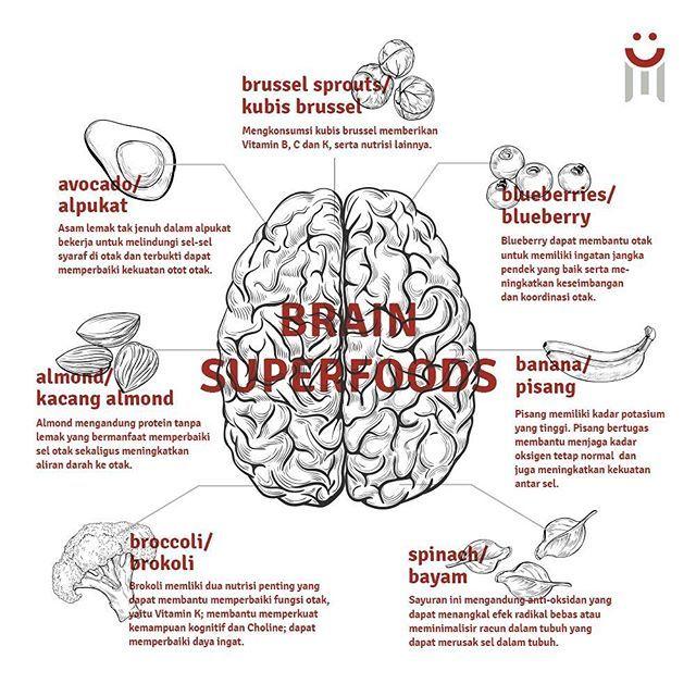 #InfoSehatNominal . Tahukah kamu, apa saja kah makanan yang mampu membantu meningkatkan kinerja otakmu? . 1. Alpukat Asam lemak tak jenuh dalam alpukat bekerja untuk melindungi sel-sel syaraf di otak dan terbukti dapat memperbaiki kekuatan otot otak. Selain itu, alpukat juga membantu otak dalam mengingat dan berpikir. . 2. Kacang Almond Almond mengandung protein tanpa lemak yang bermanfaat memperbaiki sel otak sekaligus meningkatkan aliran darah ke otak. . 3. Brokoli Brokoli memliki dua…