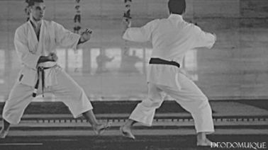 good timing - Karate - martial arts gifs