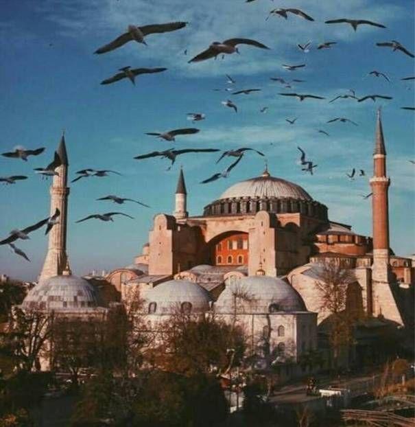 السياحة في اسطنبول Istanbul Photography Istanbul Turkey Photography Hagia Sophia