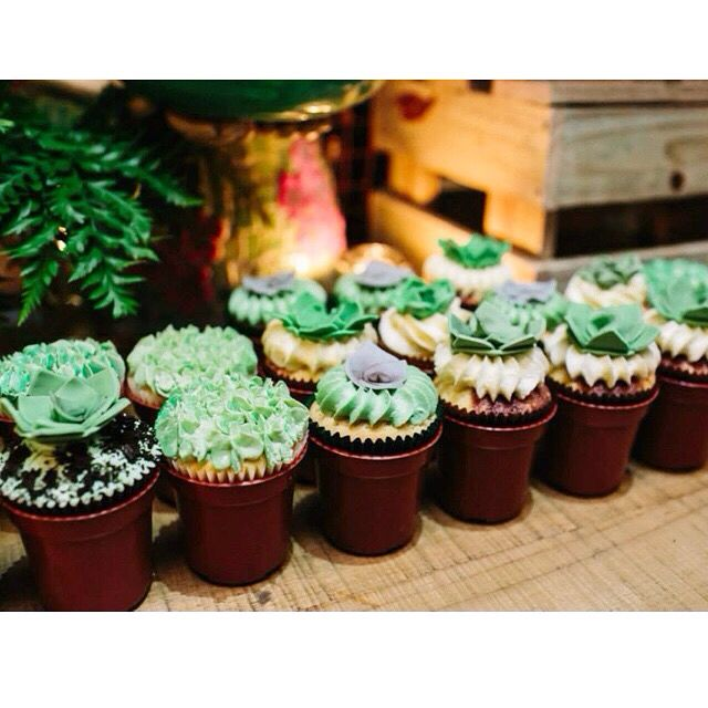 Cactus cupcakes by www.breezyscakes.com.au