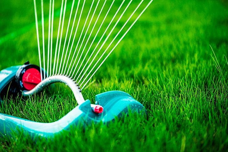 how to make grass greener and thicker