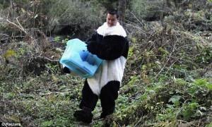 A panda carrying his head in a bucket.Pandas Surrogate, Baby Pandas, Pandas Cubs, Dresses Up, Giants Pandas, Creepy Pandas, Pandas Carrie, Pandas Costumes, Costumes Oddities