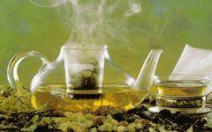 Chá de Agripalma Para Combater a Inflamação