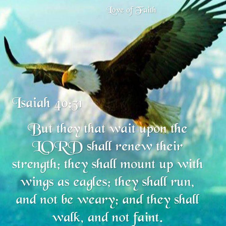 Isaiah 40:31 KJV  via: Irene
