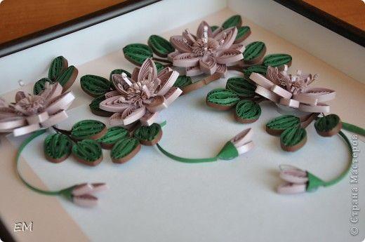 Дикие цветы и колибри фото 3