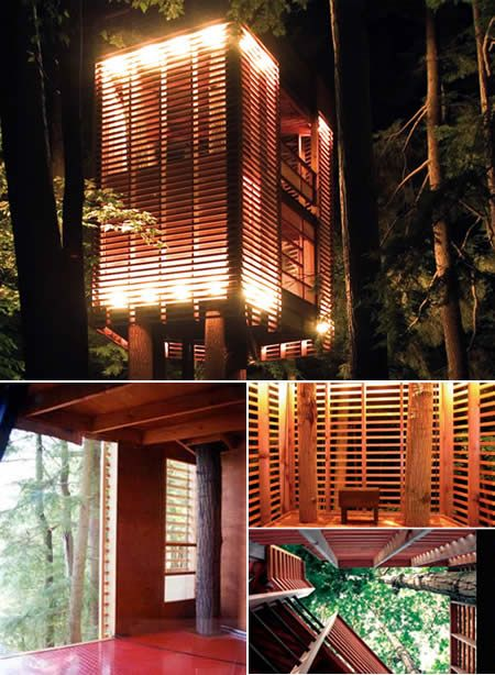"""The 4Treehouse by Lukasz Kos floats like a """"Japanese lantern on stilts"""" and is situated to accommodate four existing trees on the site. As with the best tree house designs, this project successfully worked around the existing natural site conditions. The three-story house itself rents suspended from these four primary site trees."""