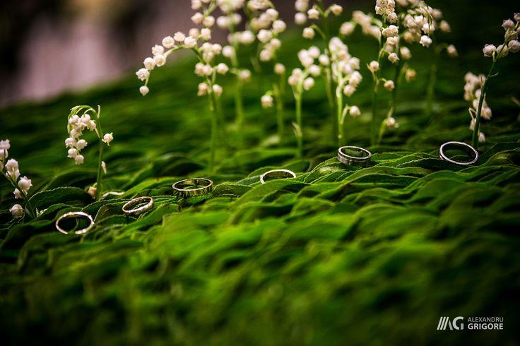 Wedding Bands - Engagement Rings - Wedding Photography Alex Grigore Nature #weddings #weddingphotography #floraldesign #floraldecor #florariairis