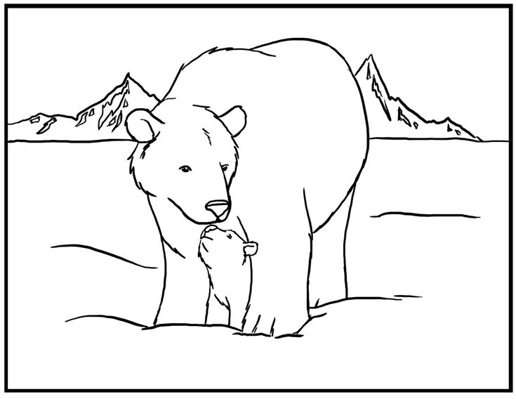 printable polar bear coloring pages kids colorinenet 24288 - Baby Arctic Animals Coloring Pages