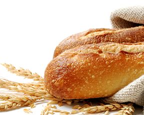 Accademia del pane ita