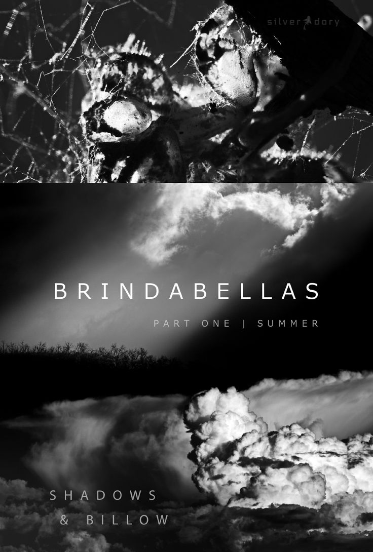 Film poster for 'brindabellas part one | summer' - available now to rent or buy  -  https://vimeo.com/ondemand/brindabellassummer