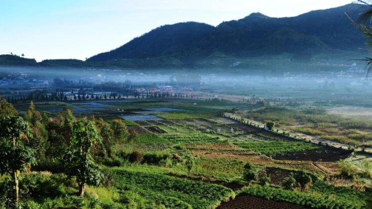 The Associated Press      					The Associated Press 			Posted: Jul 02, 2017 6:28 AM ET 			Last Updated: Jul 02, 2017 6:28 AM ET         The Dieng Plateau in the Central Java province district of Banjarnegara is a popular tourist attraction because of its cool climate and ninth-century Hindu... - #Erupts, #Indonesias, #Injured, #Island, #Java, #Main, #Volcano, #World, #World_News