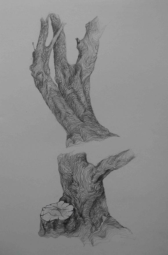 старые деревья, автор Слава Ким. Артклуб Gallerix