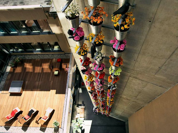 #superbude #hotel #hostel #flowers #Hamburg #Hansestadt #Germany #Europe #travel #tourism #guide #city #habor #port #destinations #sightseeing #attractions #Reeperbahn #Kiez #neighborhood #Sankt #Pauli #Apps #COOLCITIES http://www.cool-cities.com/hamburg