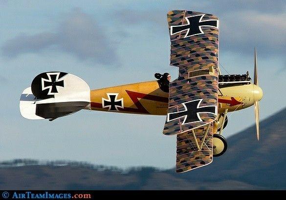 Albatros D.Va replica