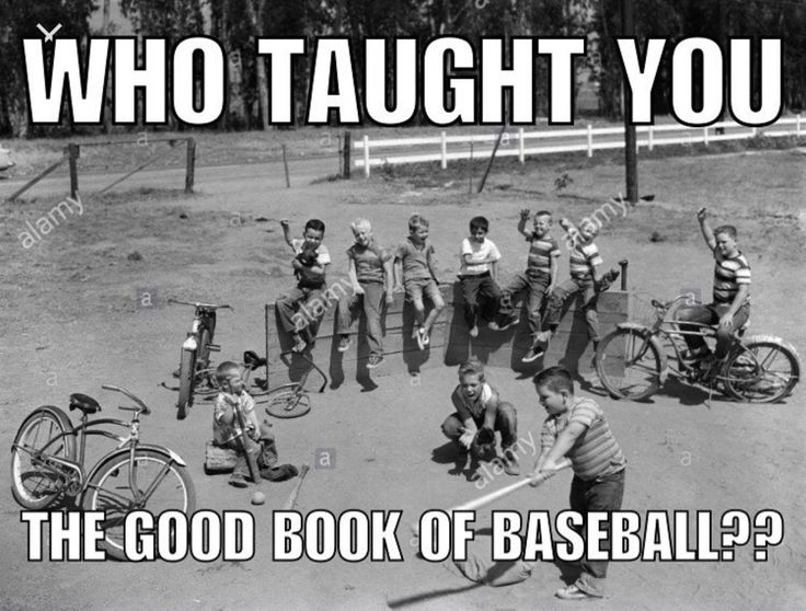 Best 25+ Baseball memes ideas that you will like on ...