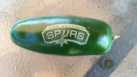 A jalapeno laser engraved with the San Antonio Spurs logo by Christian Silva and his father Humberto Silva.
