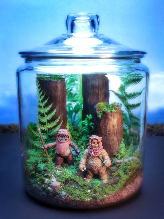 Ewok Duo - Endor Forest Terrarium - I really think this would be awesome on hubby's office desk.