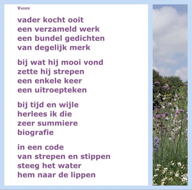 Vader Willem Wilmink