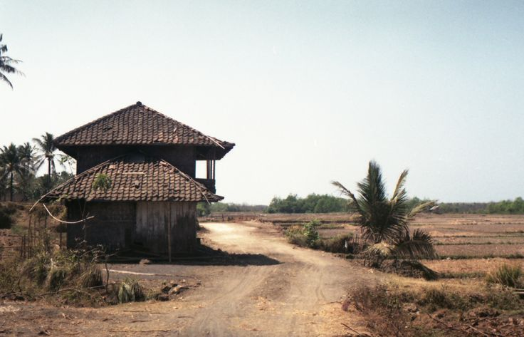 This rundown house is the district government property used for a secretariat office for food and agricultural stock planning. This is a chain of the apparent dysfunctional system that surprisingly occured in Banten, one of the provinces in West Java, and in border with the capital province of Jakarta.