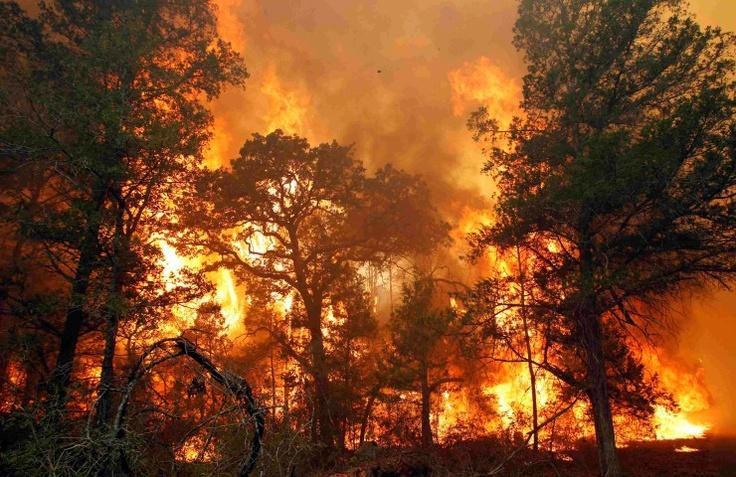 Bastrop fire :(