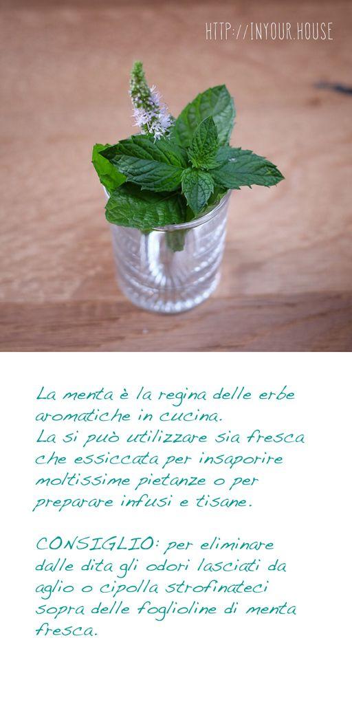 Usi alternativi delle #erbe #aromatiche. La #menta. #cucina #casa #rimedinaturali #ricette
