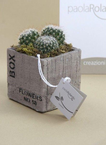 Bonsai cubo piccolo pianta grassa di Paola Rolando Creazioni una bomboniera natural chic è simbolo di classe ed eleganza.